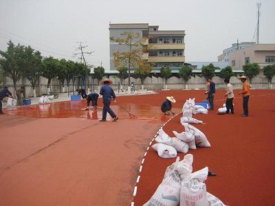 深圳市潜龙中心学校塑胶跑道