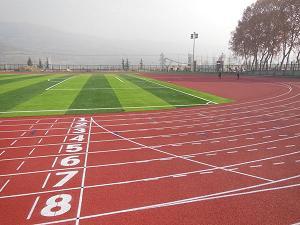 甘肃林业职业技术学院400米塑胶跑道铺设工程