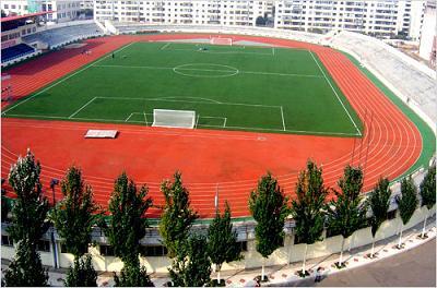 黑龙江大学混合型塑胶跑道铺设工程