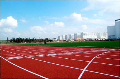 河南省新乡市新乡体育场塑胶跑道工程