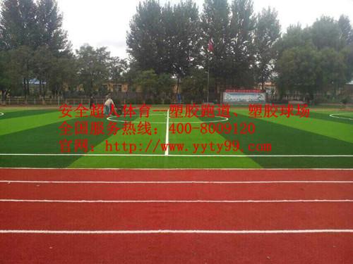 河北秦皇岛市姚周塞中学混合型塑胶跑道